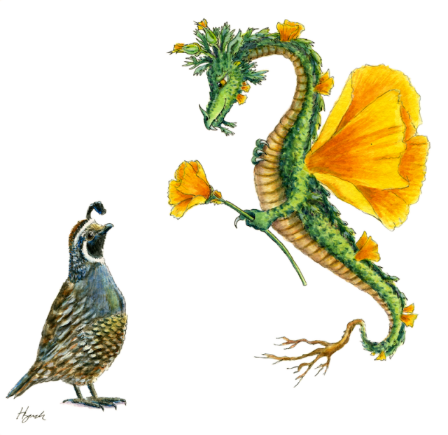 """Dragon art""""Flower dragon"" ""California Poppy""""Golden Poppy Dragon""""Golden Dragon"" A California Poppy Dragon hands a poppy to a ""California Quail' HBdragon"