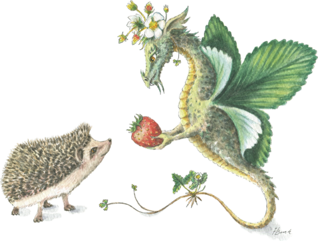 Strawberry Dragon & Hedgehog