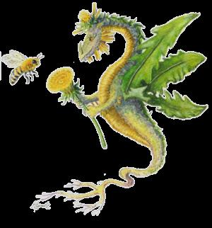 """Dragon art""""Flower Dragon"" ""Heidi Buck""A Dandelion Dragon gives a dandelion flower to a Honey Bee"