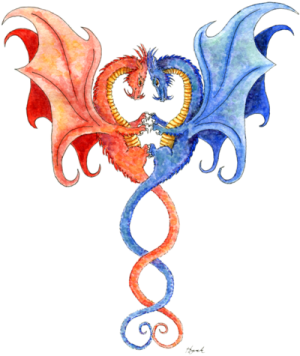 """Dragon art"" ""Dragon tattoo art"" Intertwined Dragons ""Intertwined Dragons"" Dragon tattoo"