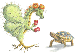 Prickly Pear Flower Dragon with Desert Tortoise