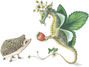 Strawberry Dragon & Hedgehog